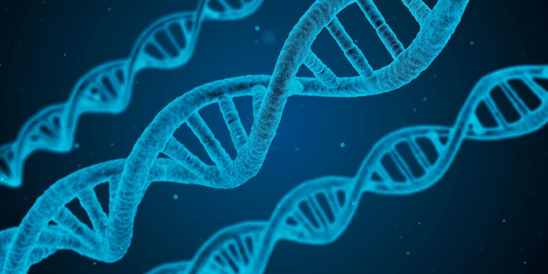Células sobre un fondo en azul